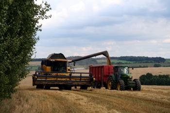 Zu sehen ist ein Bild einer Landwirtschaft